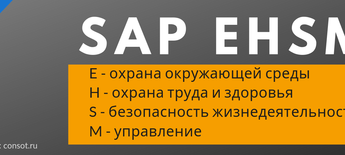 SAP EHSM